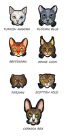 Cats by yeyra