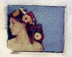 girl with the flowers by perry