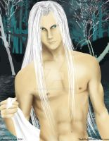 Sephiroth Sexy Project by TsukiNoKishi