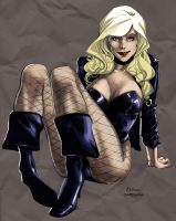 black canary by anjum by rcardoso530