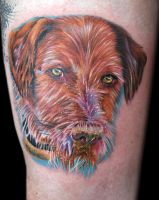 bees dog by tat2istcecil