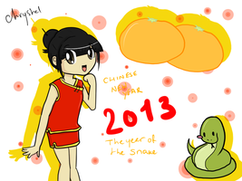 Chinese New Year 2013 by kitty4699