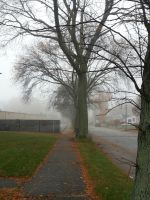November Fog by GUDRUN355