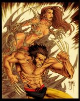 Witchblade and wolverine color by Andrew-ak-47