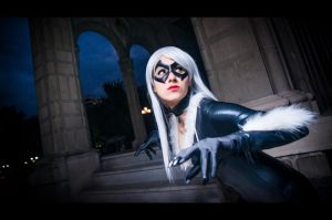 Black Cat by MadeinPlute