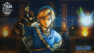 Blue Tunic Link Zelda Wii U by GameMaster1111001