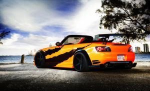 Honda S2000 Racing Car by Renato9