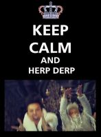 Keep calm and HERP DERP by Ryuiya