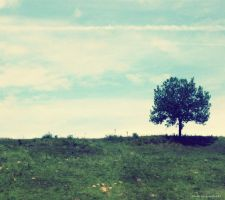 Lonely Tree 2 by Iulia-Oprinesc