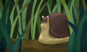 AMAM: Snail by WithoutName