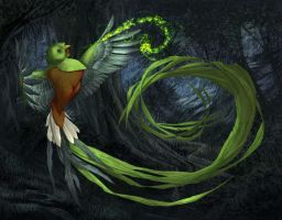 Quetzal by angelero