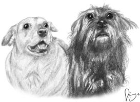 The Dogs by Action-Hank
