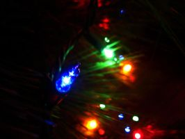 Christmas Tree Lights by Holly6669666