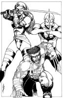Wolvie,psylocke,ultraman team up by Dingodile24