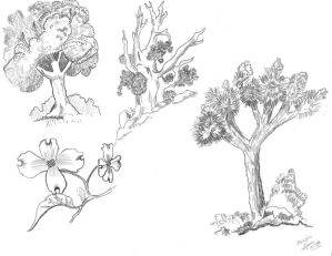 .:~ Gossip Coco's Art ~:. Trees_and_flowers_sketchs_by_gossipCoco