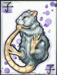 Zodiac: The Rat by forensicfox