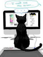 Cat-owner's Workspace by That-Black-Cat
