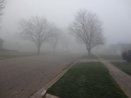 Foggy Day '12 03 by DNLnamek01
