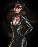Catwoman by OngJ