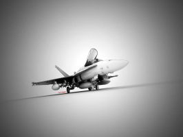 F-18 wallpaper by blakk