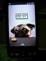 HTC Desire Pug lockscreen by sn00pie