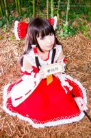 Shrine maiden who protects dream by Hitomi-Cosplay