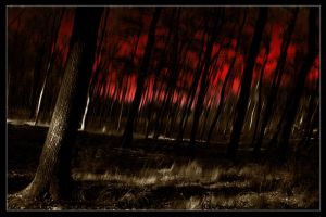 Forest in blood by josephsos