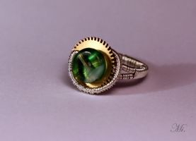 Steampunk ring 9 by TheCraftsman