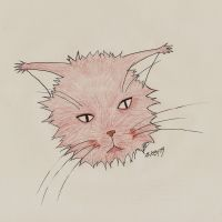 cat 2 by atsumimag