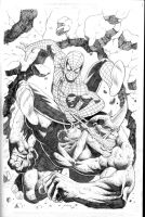 Spiderman vs Rhino by RubusTheBarbarian
