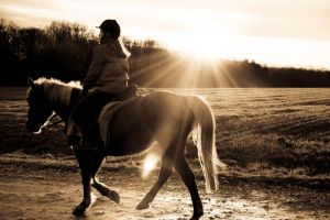 ...put the sun on the horse... by vedrannovak