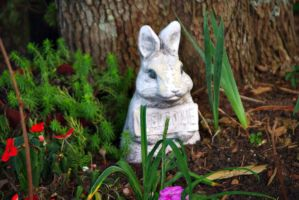 Bunny Statue by bewilderedconfused