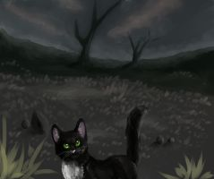 Ravenpaw by Happy--Cat
