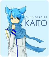 AT cottonplus: Nekomimi Kaito by loveofcheese