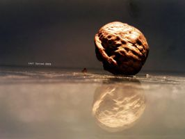 Imperfect Reflection by Last-Savior