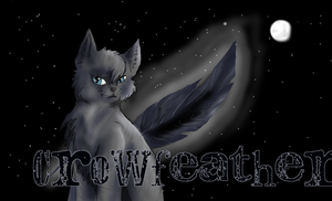 Crowfeather by Stripeh