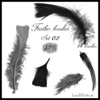 Feather brushes - set 02 - JPG by LunaNYXstock
