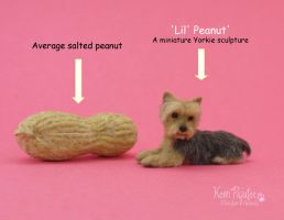 Miniature Yorkie Sculpture ~ Lil Peanut by Pajutee
