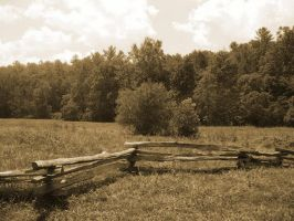 Wooden Rail by morghach