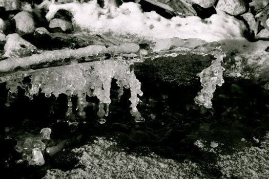 Frozen Crystals by BecciJsPhotography