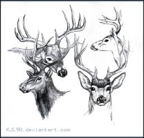 Deer Sketches by KJL90