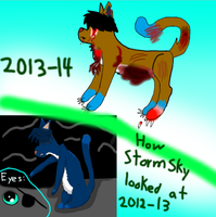 How Stormy has changed... O_o by LittleOrca20