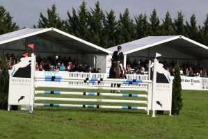 show jumping by thegeforce