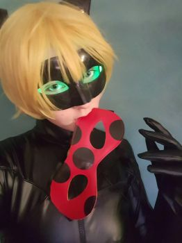 Chat Noir : Miraculous ladybug  by lilly10baby