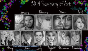 2014 Summary of Art by Lilleandra