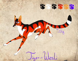 Tiger-Wiesli - character concept sheet by StanHoneyThief