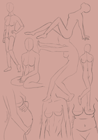 Female Anatomy Exercise by loveblack