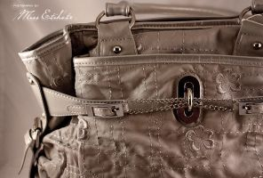 Gray Adore Bag by miss-etikate