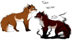 old ''new'' character - Talon by Spottedfire23