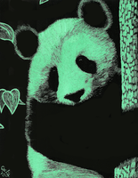 Panda Scratch Art by Goldencloud